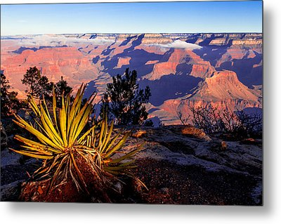 Metal Print featuring the photograph Grand Canyon 31 by Donna Corless