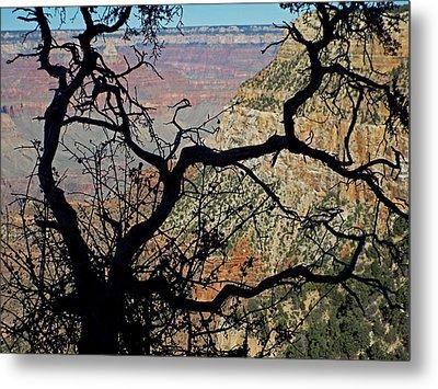Grand Canyon 8 Metal Print