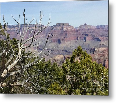 Grand Canyon National Park South Rim Metal Print by Patricia E Sundik