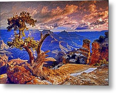 Grand Canyon Pine Metal Print by Dennis Cox WorldViews