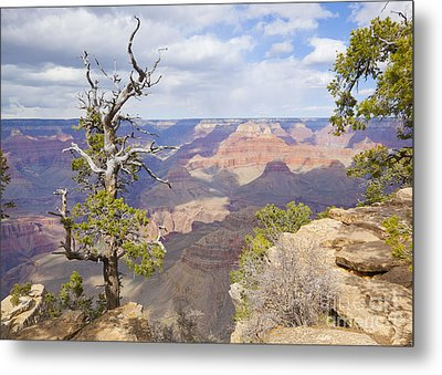 Metal Print featuring the photograph Grand Canyon View by Chris Dutton
