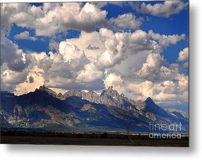 Grand Teton National Park Metal Print by Diane E Berry