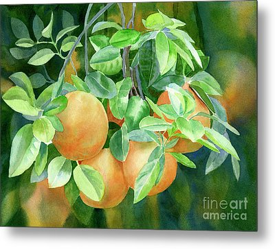 Grapefruit With Background Metal Print by Sharon Freeman