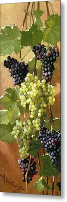 Grapes Metal Print by Edward Chalmers Leavitt