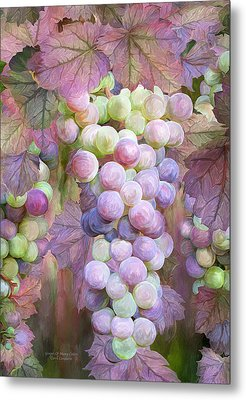 Grapes Of Many Colors Metal Print