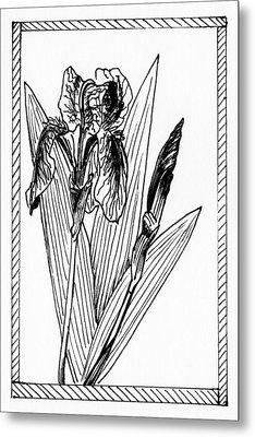 Graphic Iris Metal Print
