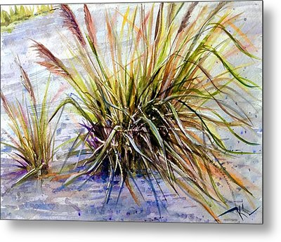 Grass 1 Metal Print
