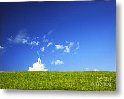 Grass Cloud Sky Metal Print by Brandon Tabiolo - Printscapes