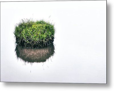 Grass Island Metal Print by Joana Kruse