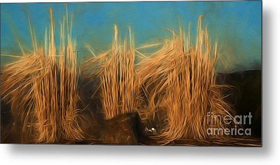 Grass Metal Print by Kathleen Rinker