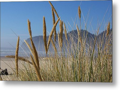 Metal Print featuring the photograph Grass Seeds On The Beach by Angi Parks