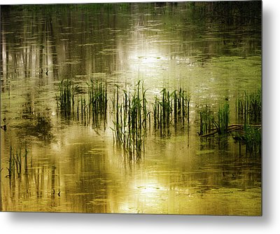 Metal Print featuring the photograph Grassland Abstract by Jessica Jenney