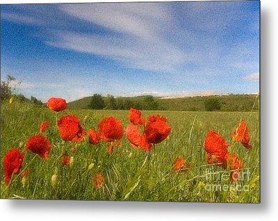 Metal Print featuring the photograph Grassland And Red Poppy Flowers by Jean Bernard Roussilhe