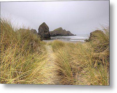 Grassy Dunes Metal Print by Kristina Rinell