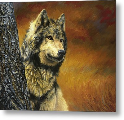 Gray Wolf Metal Print by Lucie Bilodeau