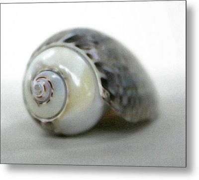 Graysnail Metal Print by Mary Haber