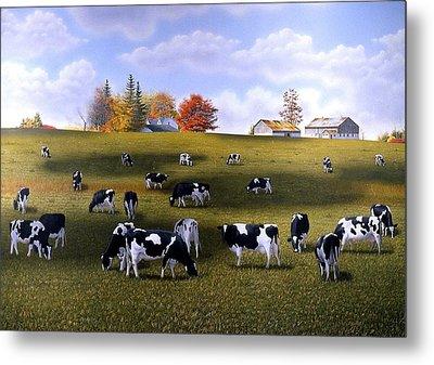 Grazing Holsteins Metal Print by Conrad Mieschke