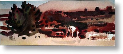 Grazing Pinto Metal Print by Donald Maier