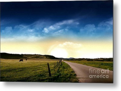 Grazing Time Metal Print by Rod Jellison