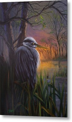 Great Blue At Sunset Metal Print by Colleen Birch