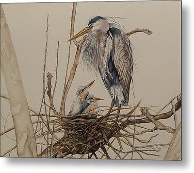 Great Blue Heron And Chicks Metal Print