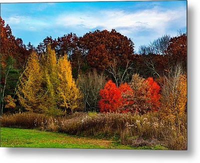 Great Brook Farm Autumn Metal Print