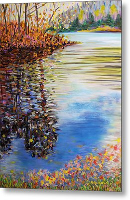 Great Hollow Lake In November Metal Print by Polly Castor