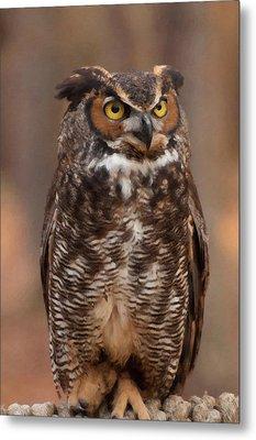 Great Horned Owl Digital Oil Metal Print by Chris Flees