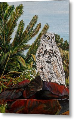 Great Horned Owl - Owl On The Rocks Metal Print by Marilyn  McNish