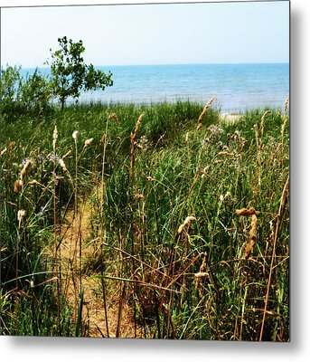 Metal Print featuring the photograph Great Lake Beach Path by Michelle Calkins