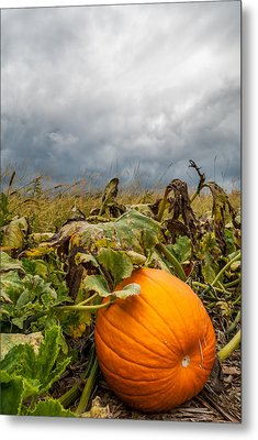 Great Pumpkin Off Center Metal Print