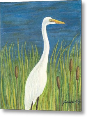 Great White Egret By Pond Metal Print