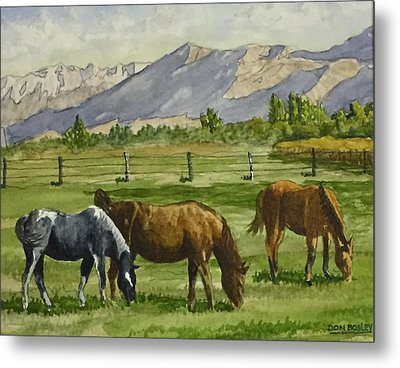 Green Acres Metal Print by Don Bosley