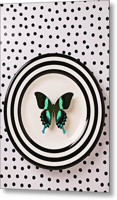 Green And Black Butterfly On Plate Metal Print by Garry Gay