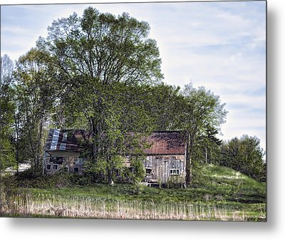 Green And Gallant Spring Metal Print by Richard Bean