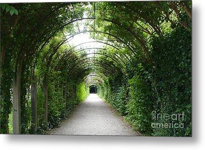 Green Arbor Of Mirabell Garden Metal Print by Carol Groenen
