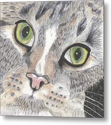 Metal Print featuring the drawing Green Eyes by Arlene Crafton