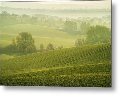 Metal Print featuring the photograph Green Foggy Waves by Jenny Rainbow