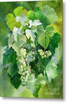 Green Grapes And Leaves Metal Print