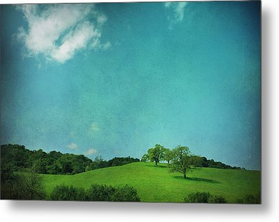 Green Grass Blue Sky Metal Print by Laurie Search