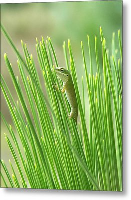 Metal Print featuring the photograph Green Is Good by Peg Urban