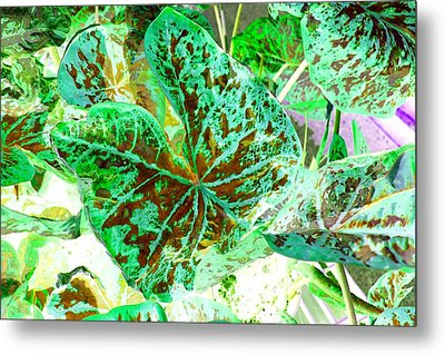Metal Print featuring the photograph Green Leafmania 1 by Marianne Dow