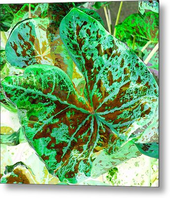Green Leafmania 2 Metal Print by Marianne Dow