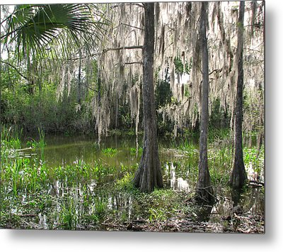 Green Swamp Metal Print by Peg Urban