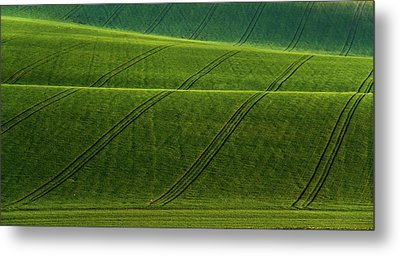Metal Print featuring the photograph Green Waves Of Rolling Hills by Jenny Rainbow