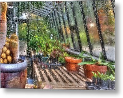 Greenhouse - In A Greenhouse Window  Metal Print by Mike Savad