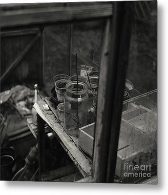 Greenhouse Metal Print
