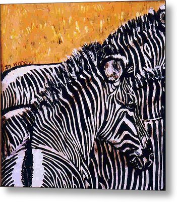 Grevy Colt Metal Print by Dy Witt