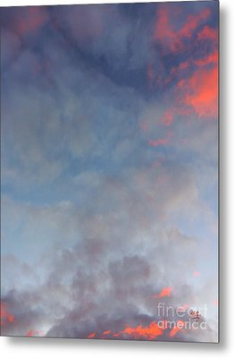 Metal Print featuring the photograph Pink Flecked Sky by Linda Hollis