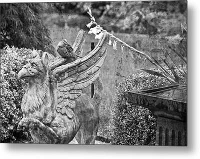 Griffin And The Dove Metal Print by Paul W Sharpe Aka Wizard of Wonders